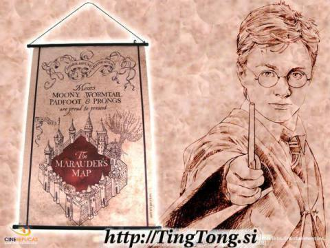 Zidni poster Harry Potter 11280