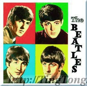 Magnetek Beatles 13975
