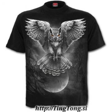 T-shirt Wings Of Wisdom