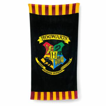 Hogwarts Colour- Harry Potter 37521