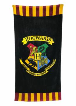 Hogwarts Colour- Harry Potter 37522