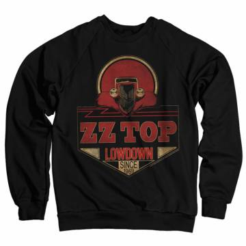 Lowdown Since 1969-ZZ Top 39490