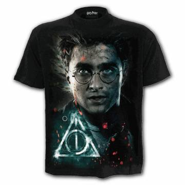 Harry Deathly Hallows- Harry Potter 40717
