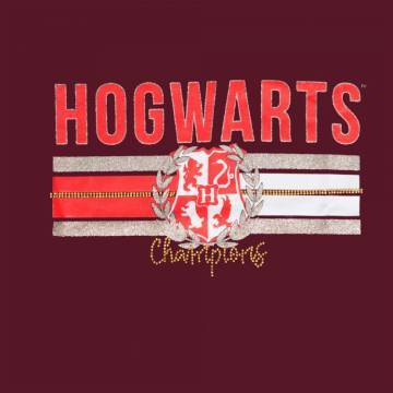 Hogwarts Champions- Harry Potter 41818