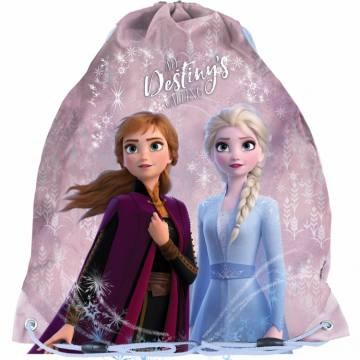 Destiny - Disney Frozen 2 43076