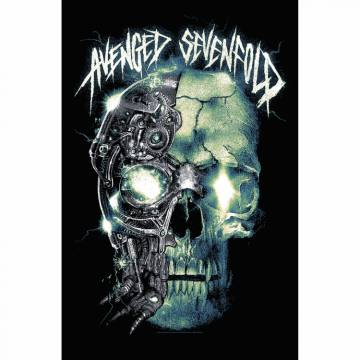 Mechanical Skull-Avenged Sevenfold 45131