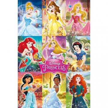 Collage-Disney Princess 50091