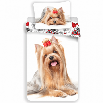 Yorkshire Terrier-Animals 52653