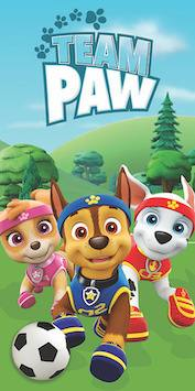Football- Paw Patrol 52756