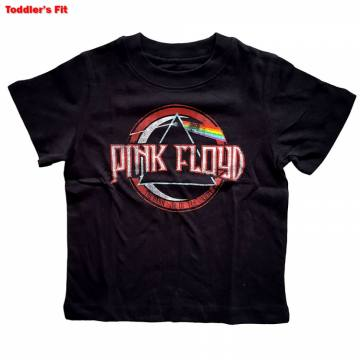 Vintage Dark Side Of The Moon-Pink Floyd 55003