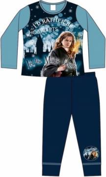 Hermione-Harry Potter 58884